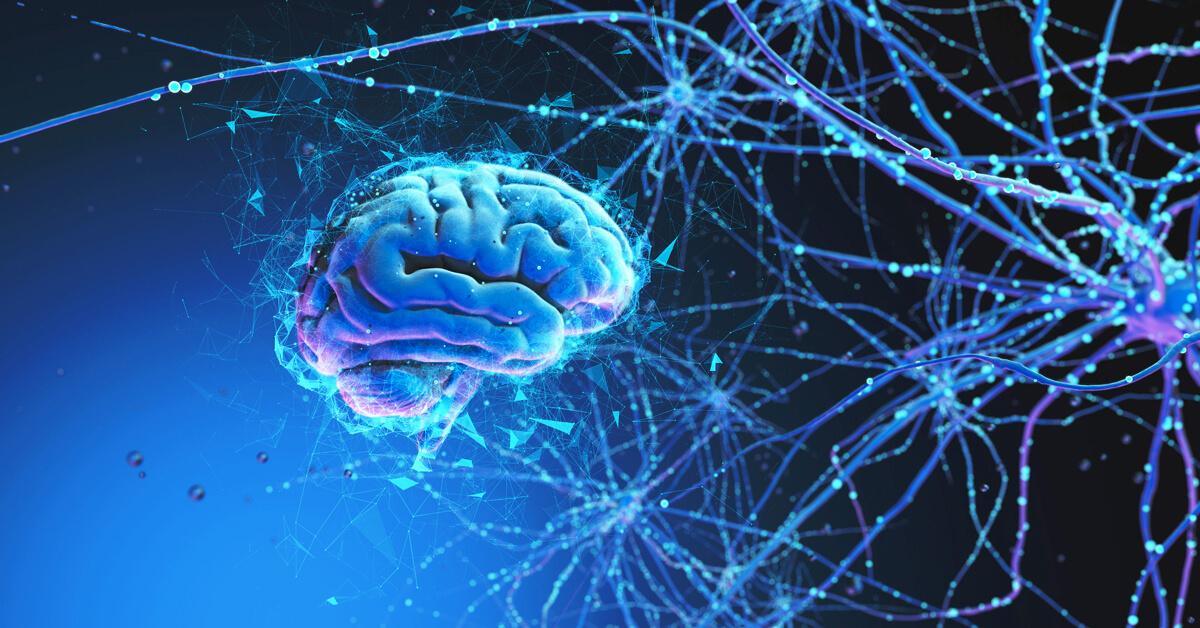 Neurális hálózatok: a kapcsolat az emberi idegrendszer és a mesterséges intelligencia közt